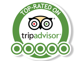 MK TripAdvisor Spotlight for April 2017 | The Most Helpful Kyoto Tour Reviews