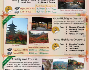 Half-Day Autumn Tours of Kyoto | MK Taxi Private Tours
