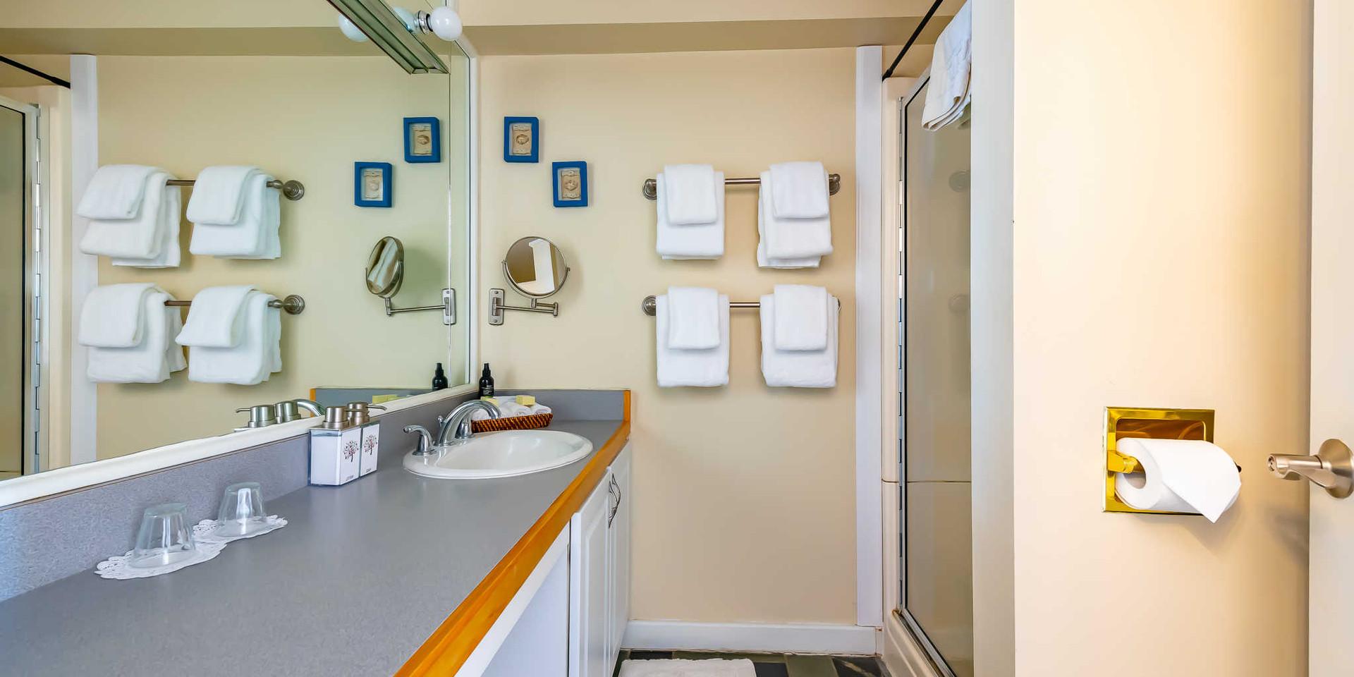Bathroom in Clark Room Shaker Mill Inn