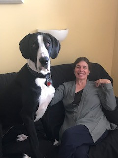 Carmen the Great Dane Relaxing with her Owner in the Honeymoon Suite