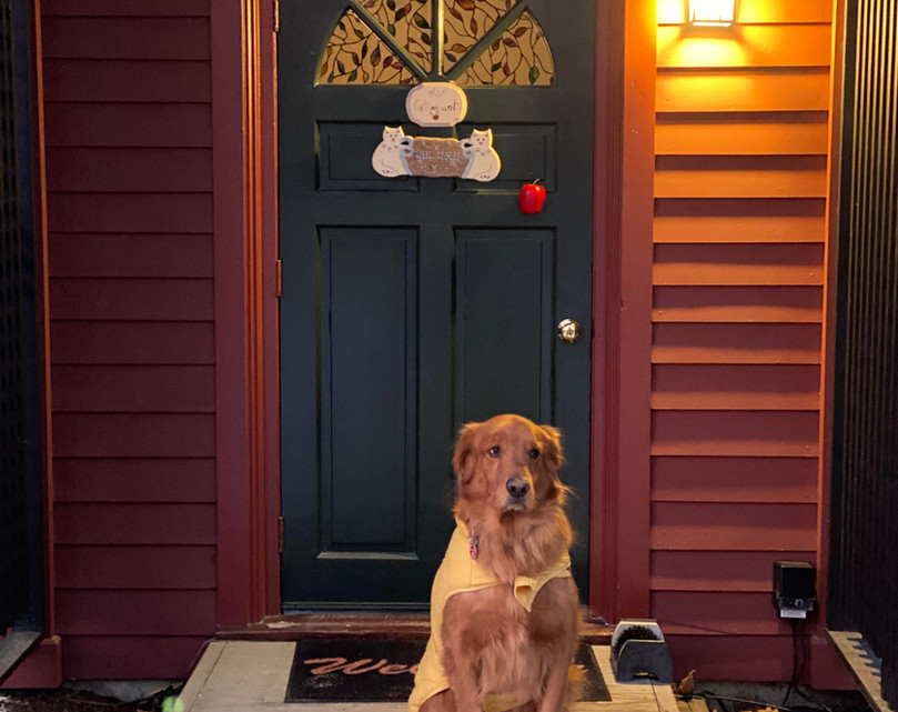 Rocky ready for his stay at the Shaker Mill Inn