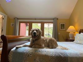 Relaxing in the Honeymoon Suite
