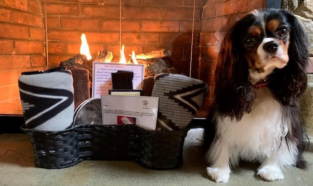 Furry Friend at the Shaker Mill Inn