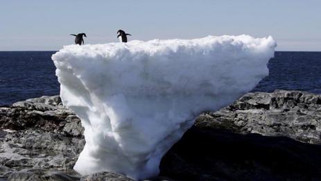 Antártica bate recorde de temperatura e chega a 17,5 oC
