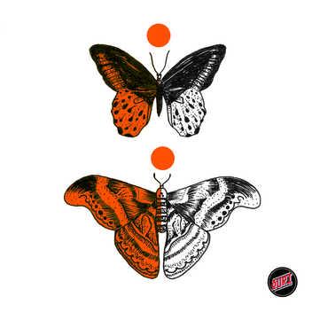 INS010 et INS011-Papillons Disponibles