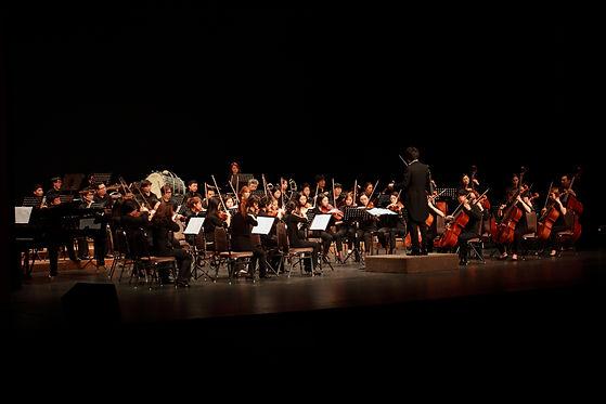 orchestra-3440397.jpg