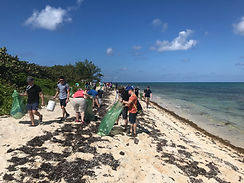 Casson Trenor Beach Cleanup Workshop