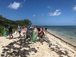 Casson Trenor Beach Cleanup Workshop