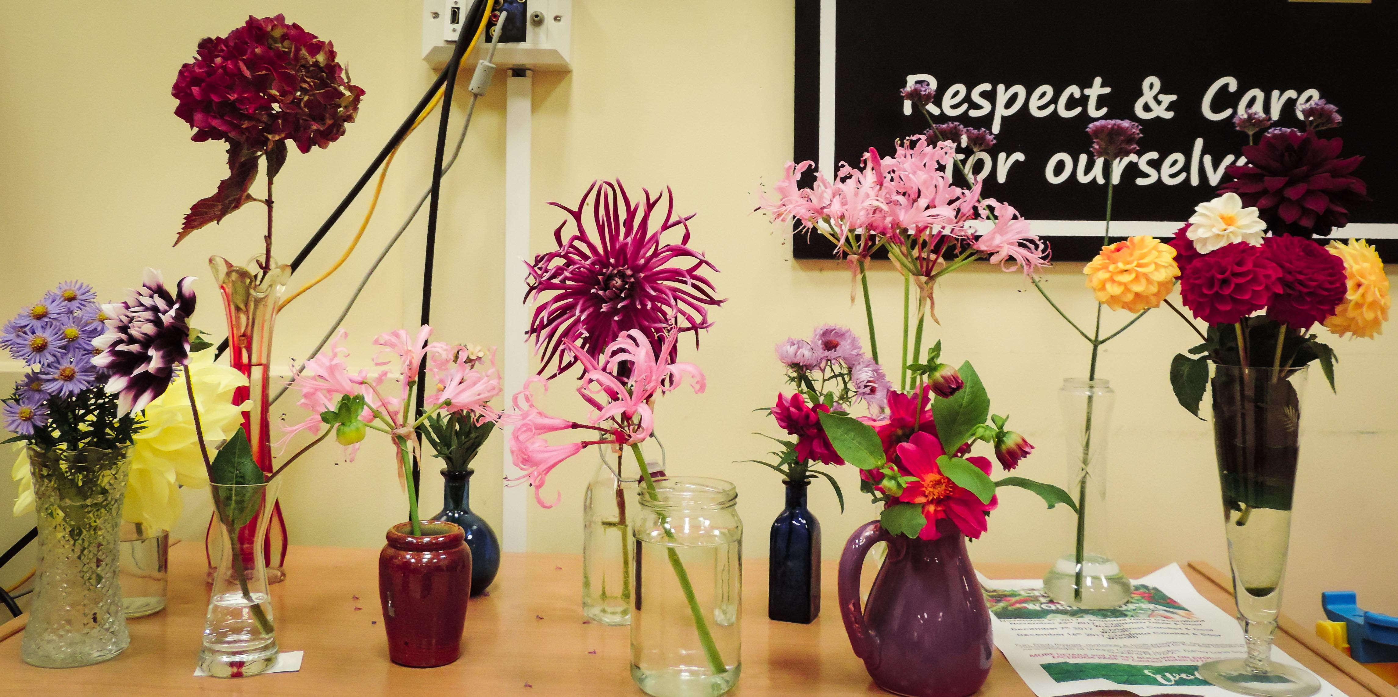 Flower of the Month Competition