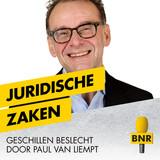 Thumbnail_Juridische_zaken_kopiëren.jpg
