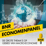 Thumbnail_BNR_Economenpanel_kopiëren.jpg