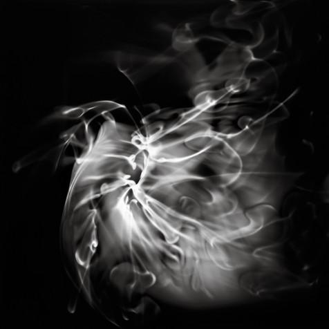 Swirls, Whorls, and Tendrils 10
