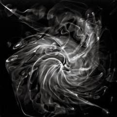 Swirls, Whorls, and Tendrils 8