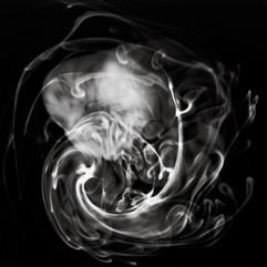 Swirls, Whorls, and Tendrils 6