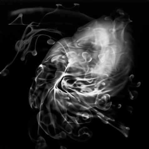 Swirls, Whorls, and Tendrils 12