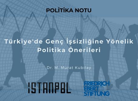 Türkiye'de Genç İşsizliğine Yönelik Politika Önerileri