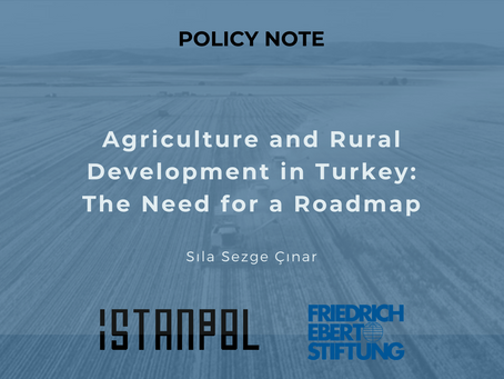 Agriculture and Rural Development in Turkey: The Need for a Roadmap