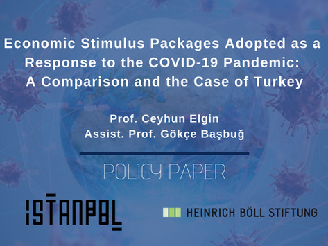 Economic Stimulus Packages as a Response to the COVID-19 Pandemic: A Comparison & the Case of Turkey