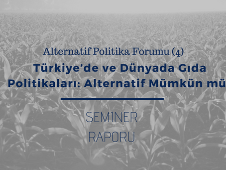 APF (4) Report: Food and agricultural policy in Turkey and abroad - Is an alternative feasible?