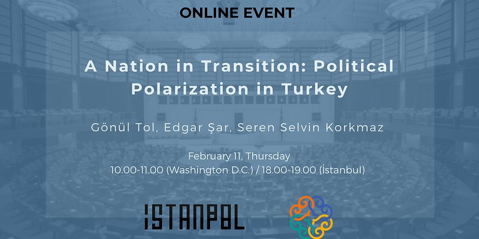 A Nation in Transition: Political Polarization in Turkey