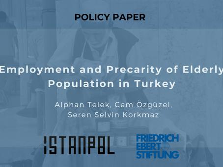Employment and Precarity of Elderly Population in Turkey