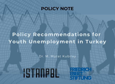 Policy Recommendations for Youth Unemployment in Turkey