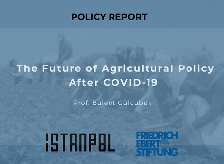 The Future of Agricultural Policy in the Aftermath of the COVID-19 Pandemic