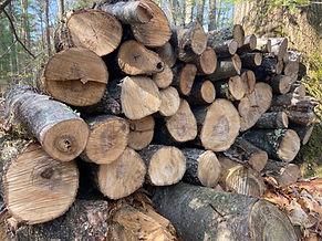 Woodpile 3.jpg