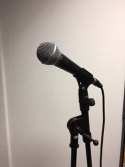 Sing For Smiles Microphone