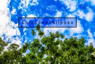 thistooshallpass-2.jpg