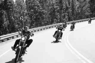 Iron Horses in the Foothills