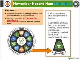 November Monthly Hazard Hunt from Safework Solutions