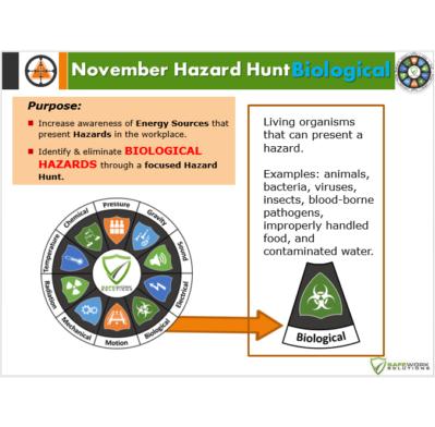 November Monthly Hazard Hunt from Safework Solutions