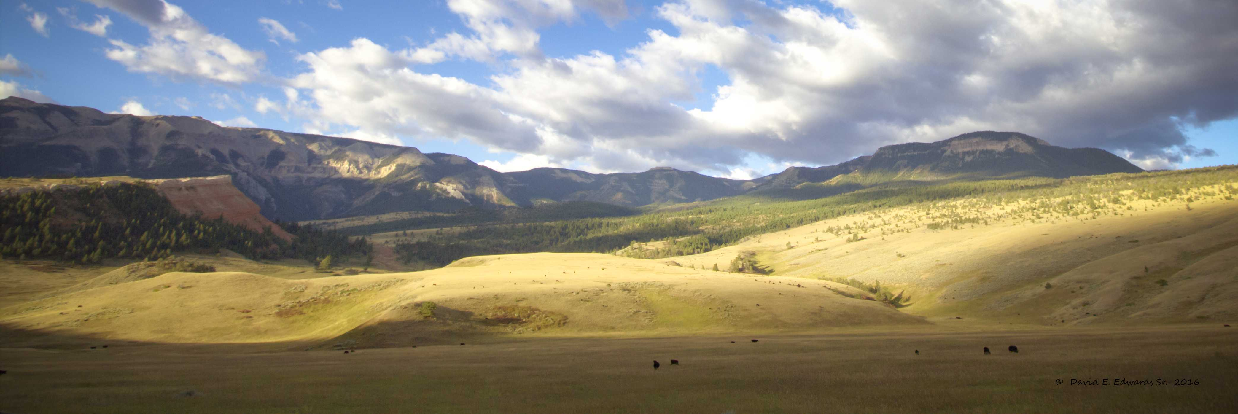 Shoshone National Park
