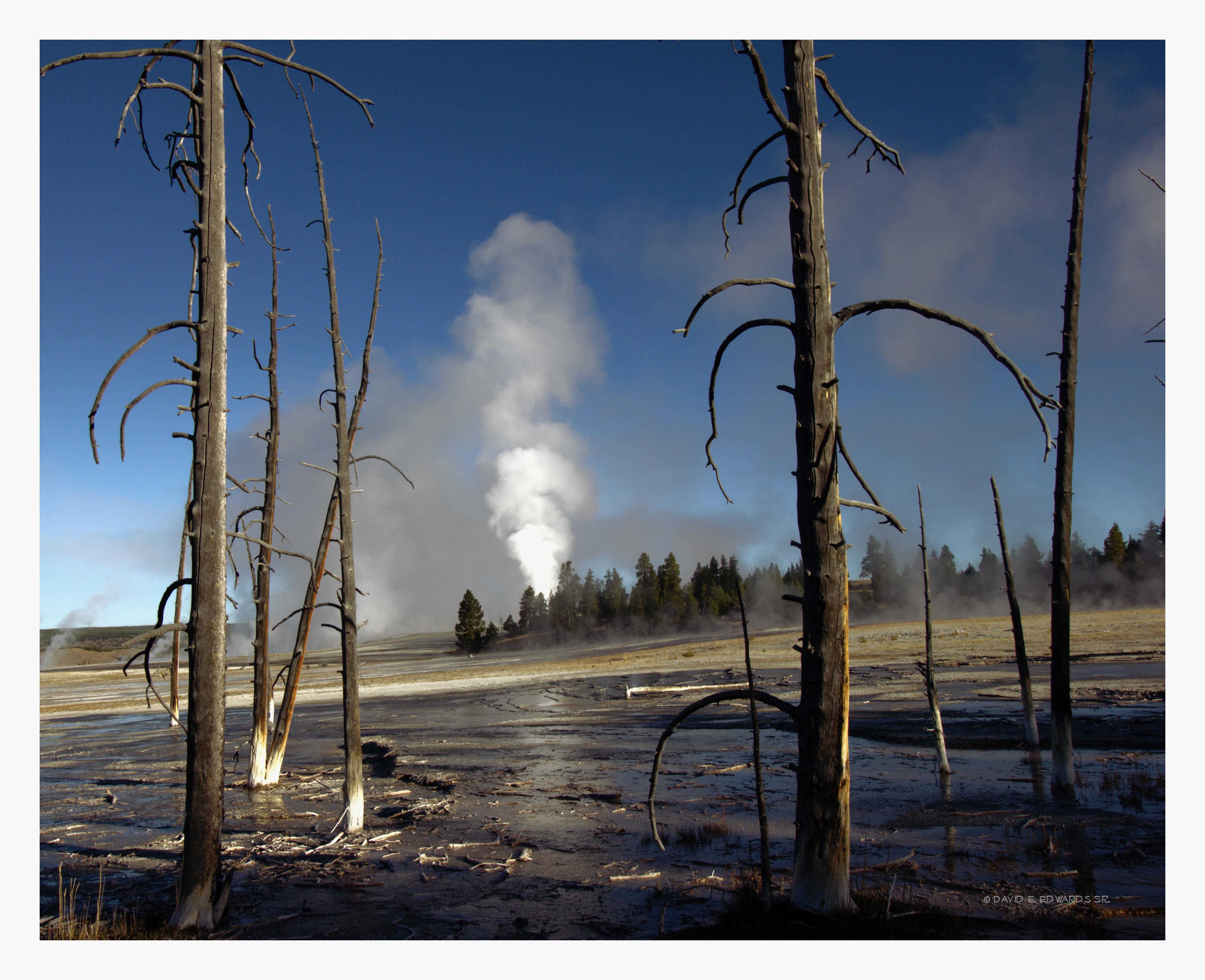 Geyser Basin-  Yellowstone
