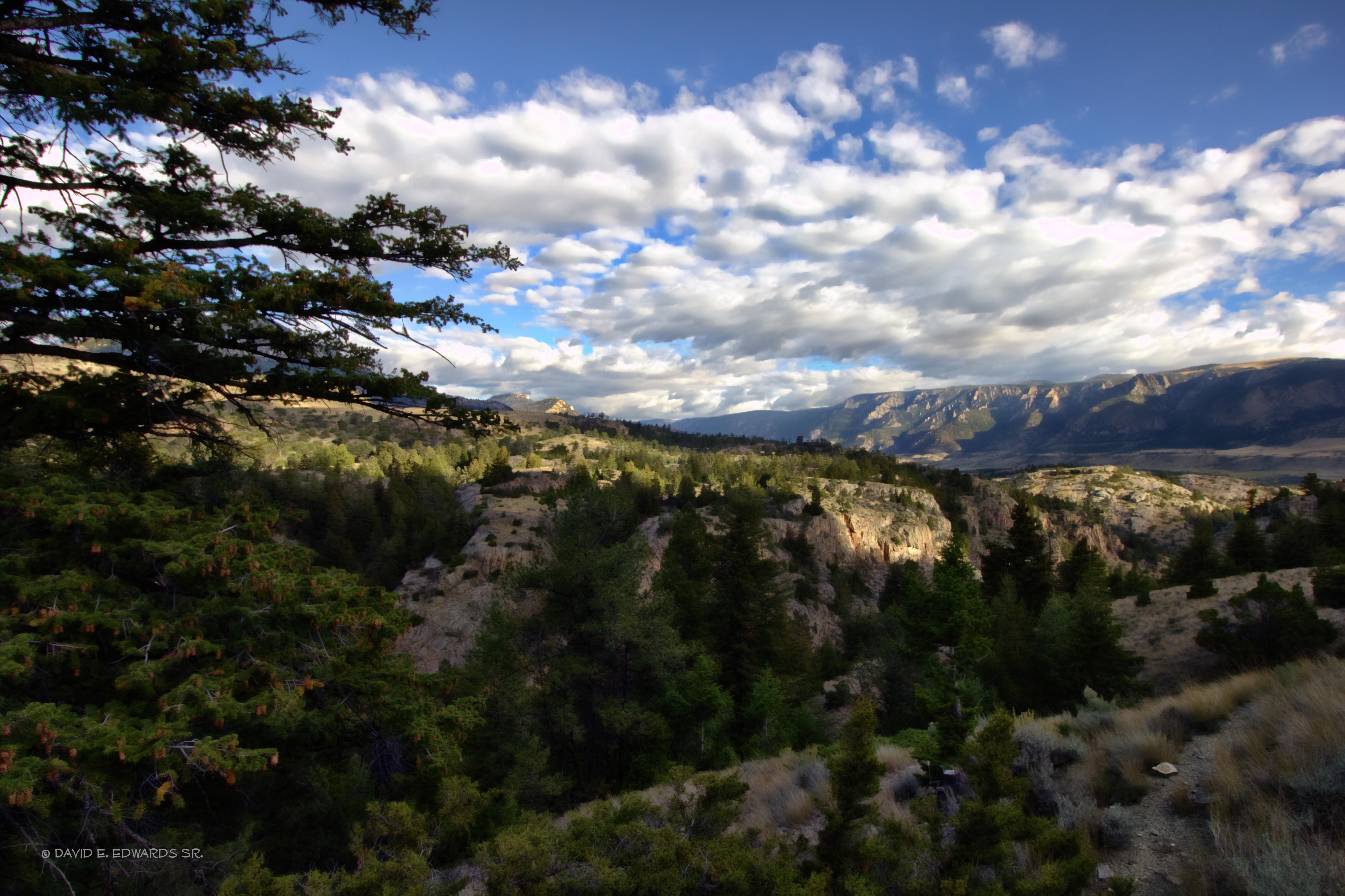 Between Cody and Yellowstone
