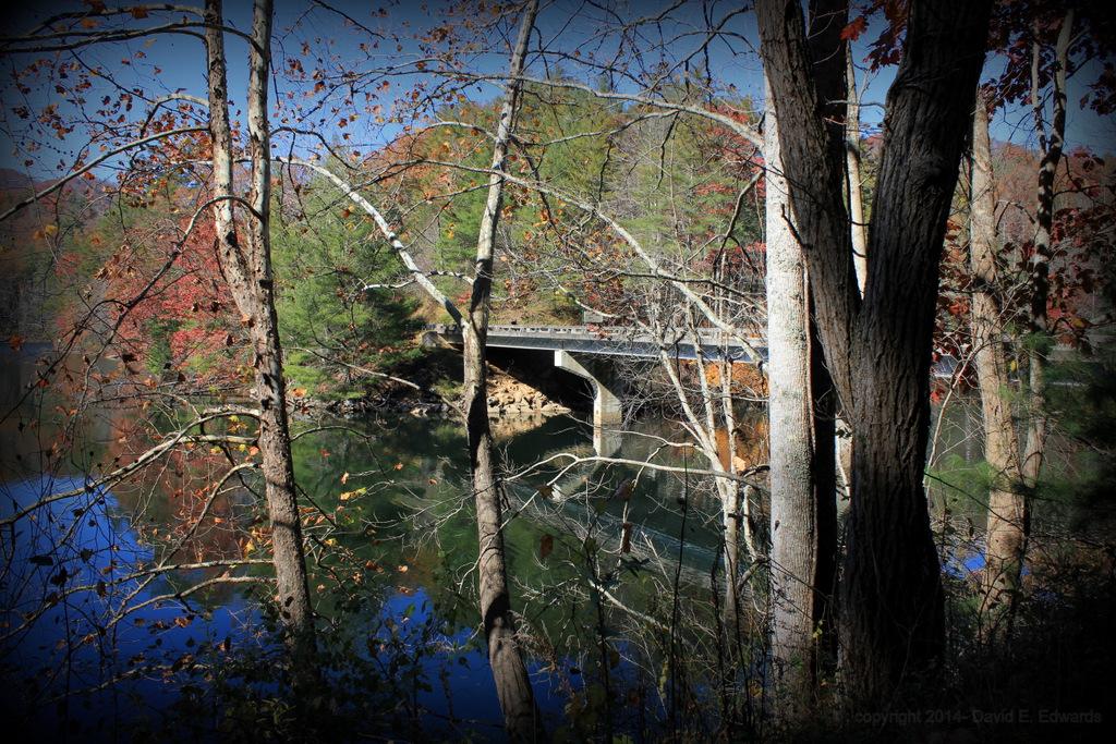Bridge near Telico Plains