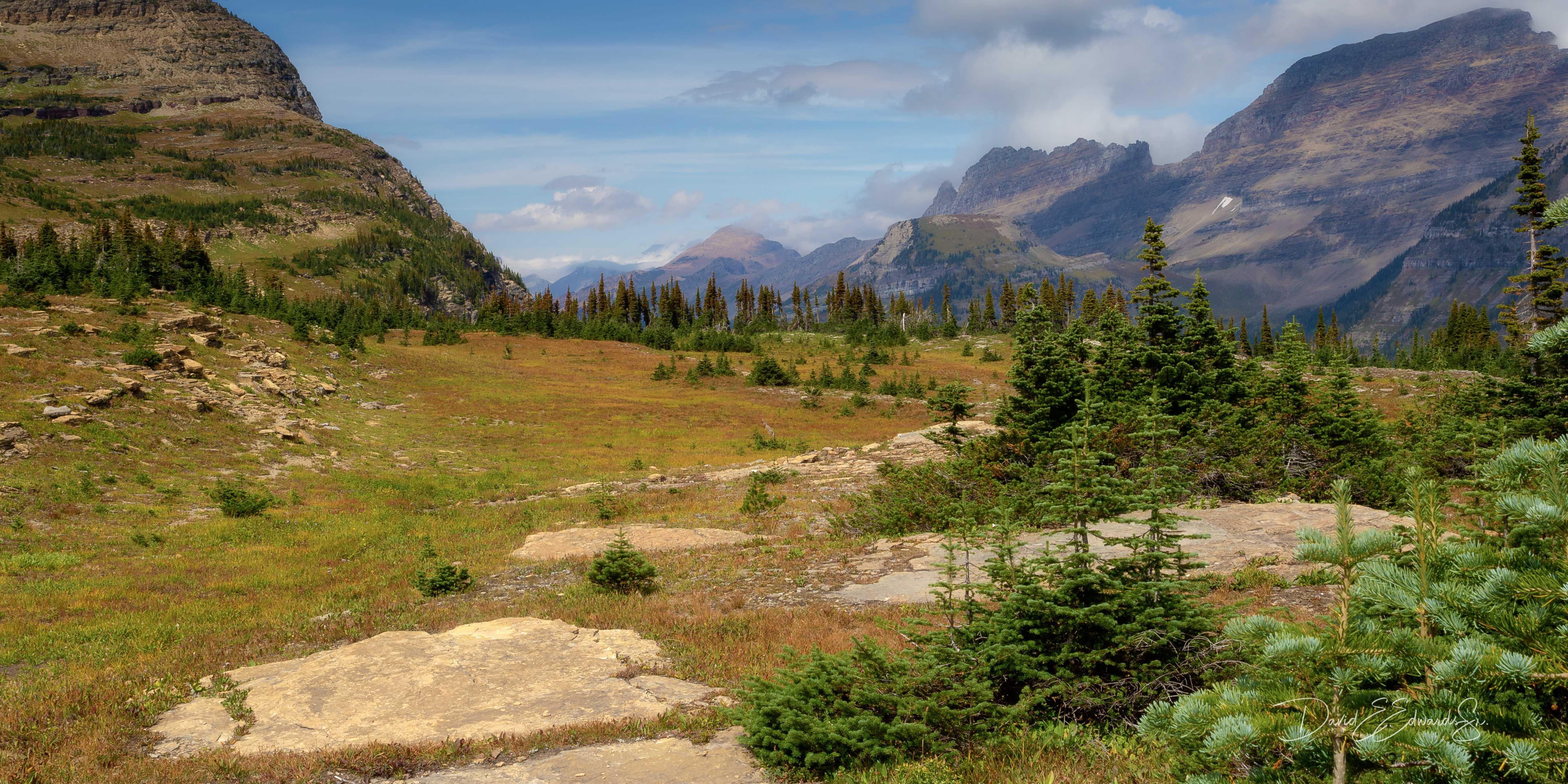 Logan Pass area-  Glacier NP