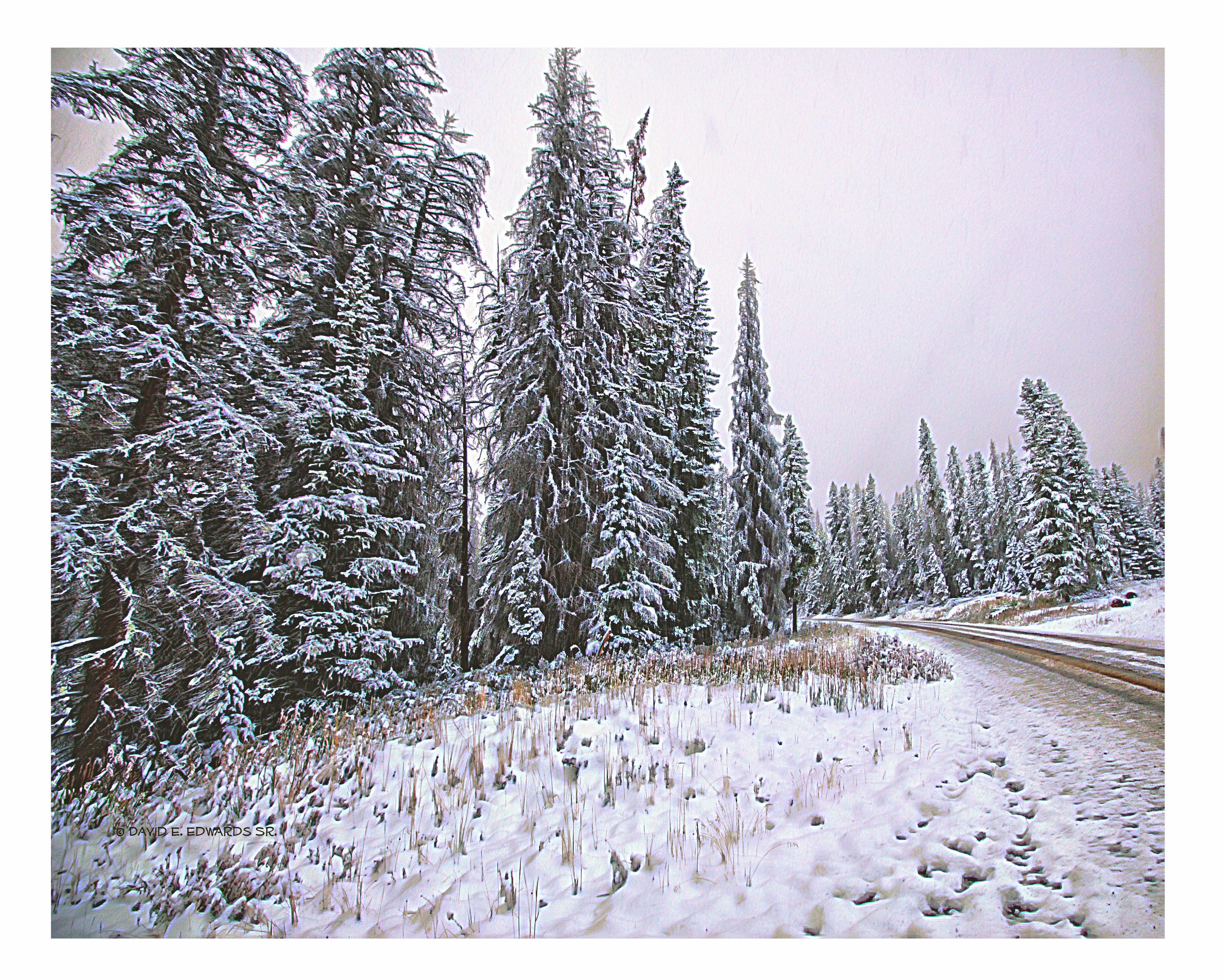 Back road near Grand Teton