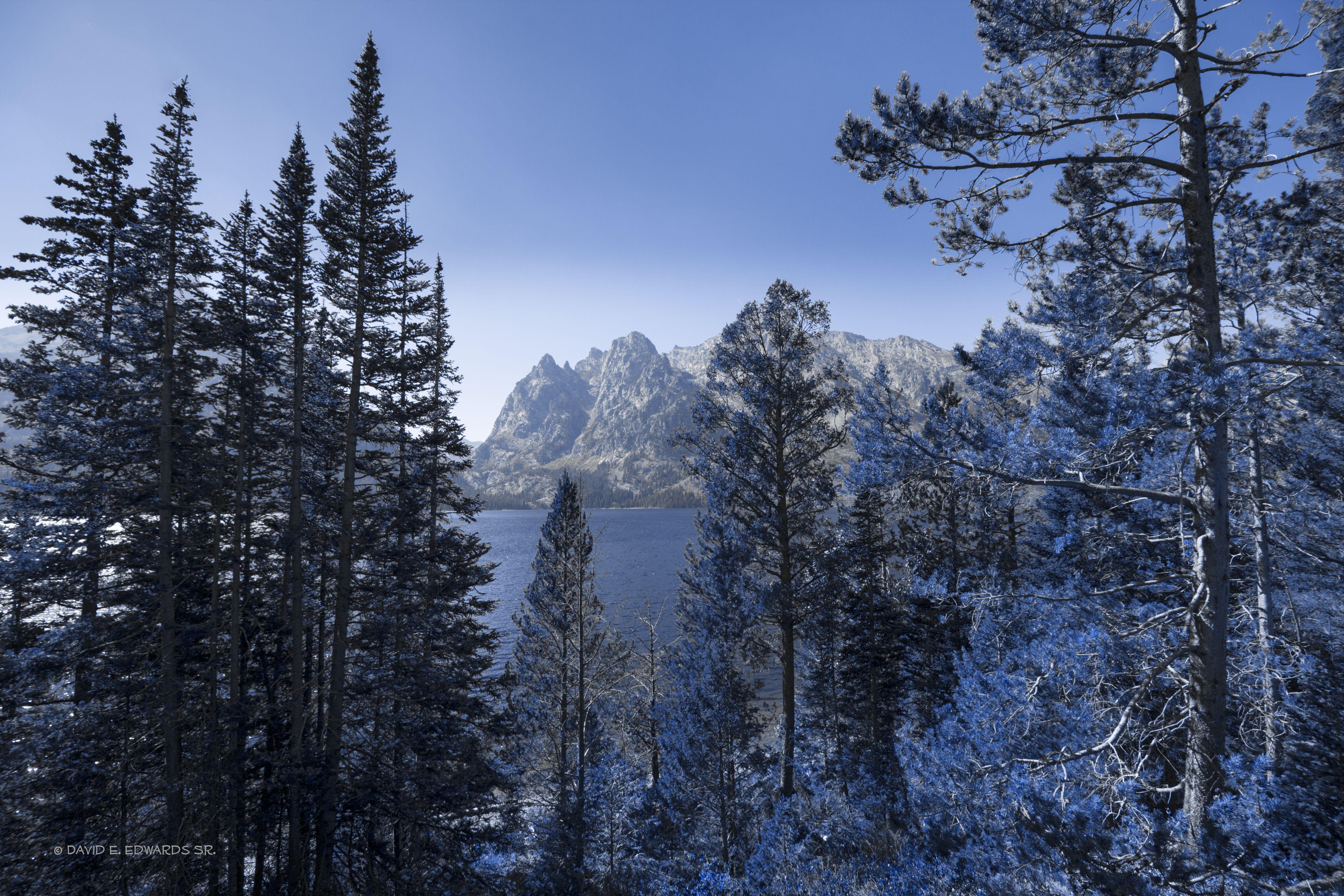 Grand Teton National Park view
