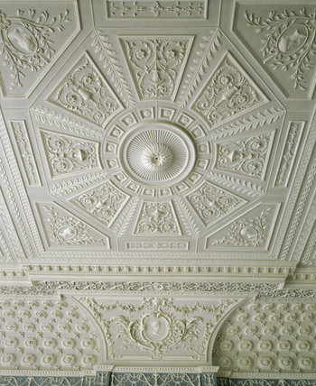 Decorative Ornate Ceilings