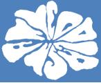 日本マイコプラズマ学会  第48回学術集会