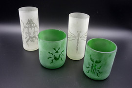 Insect Glasses