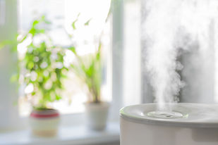 Humidifier with indoor plants in the background