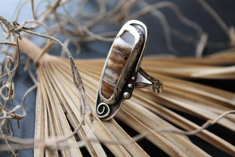 Infinity Spiral * Louisiana Palm * Le Joie De Vivre * Sz 6.5