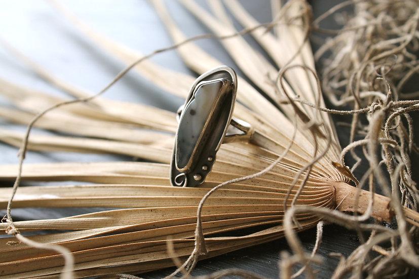 Infinity Spiral * Louisiana Palm * Le Joie De Vivre * Sz 6