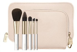 Deluxe Travel Set with Brushes