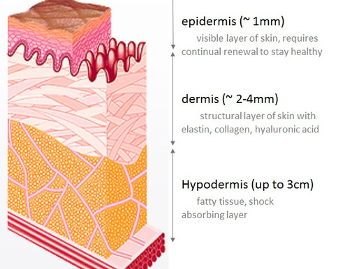 Our Skin & Exfoliation Benefits: Microdermabrasion, Dermaplaning and Chemical Peels Explained