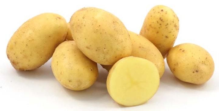 Картопля сорт Гранада