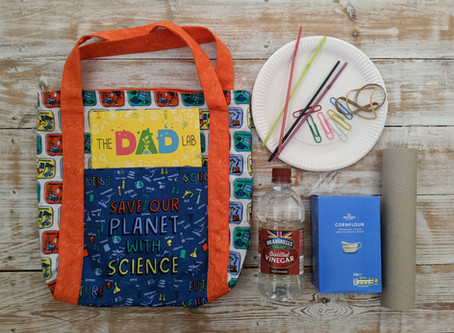 Dads Lab Project Bag